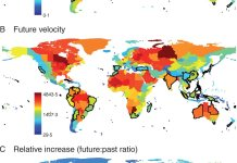 Past climate change velocity, expected future velocity and the ratio of expected future:past
