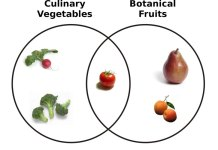 Euler diagram representing the relationship between (botanical) fruits and vegetables. Botanical fruits that are not vegetables are culinary fruits.