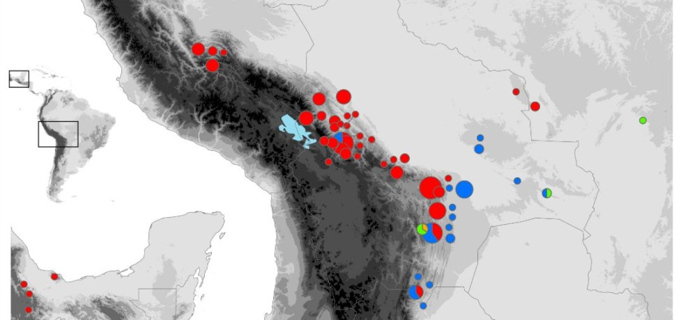 Distribution of studied Fosterella cytotypes.