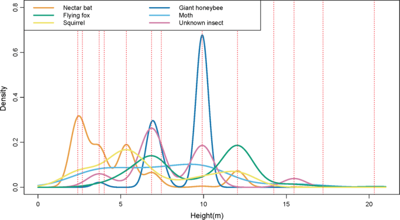 Spatial patterns of animal interactions between durian flowers along a vertical gradient