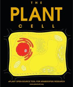 The publication of ePlant was the cover article of August's The Plant Cell.