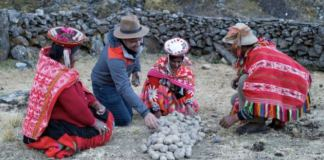 "A scene from Episode 2 of Food: Delicious Science, ""A Matter of Taste"". Host James Wong and a Quechua family detoxifies potatoes for long-term food security."