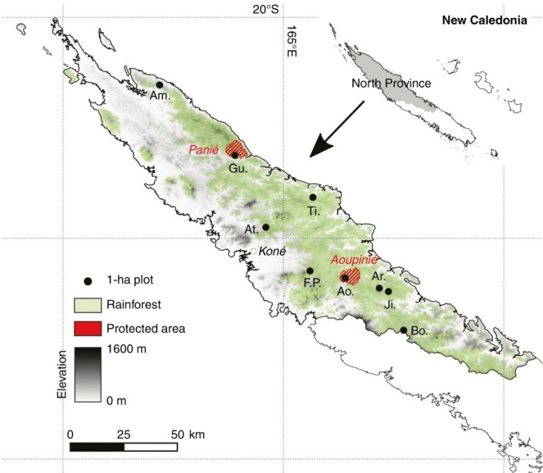 Location of the nine 1-ha plots in the North Province of New Caledonia (SW Pacific)