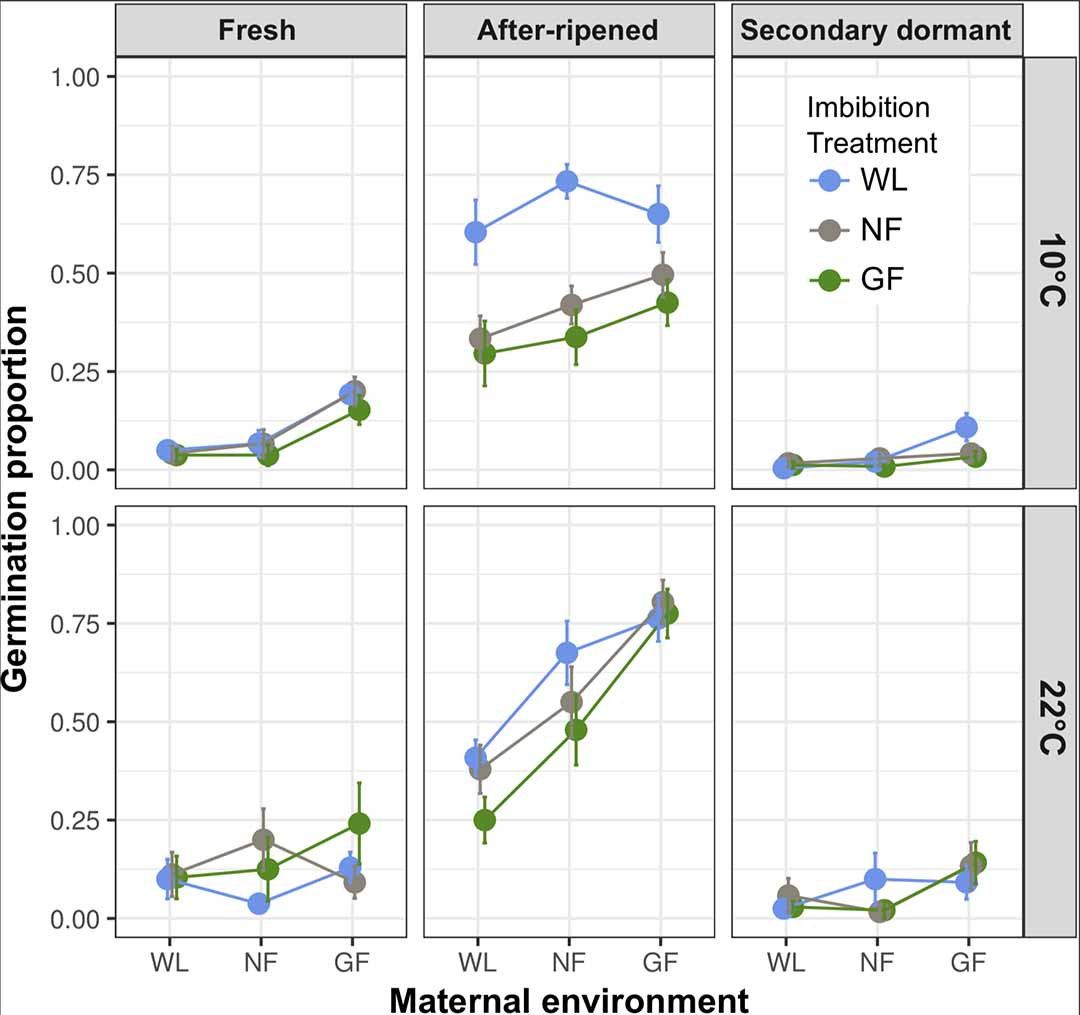 Light Environment Affects Seed Germination Within And Across Generations Diagram Effect Of Maturation Under White Wl A Neutral Filter Nf Green Gf X Axis On Fresh Seeds After Ripened Ar