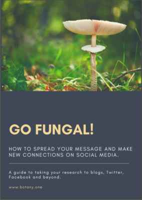 Go Fungal Cover