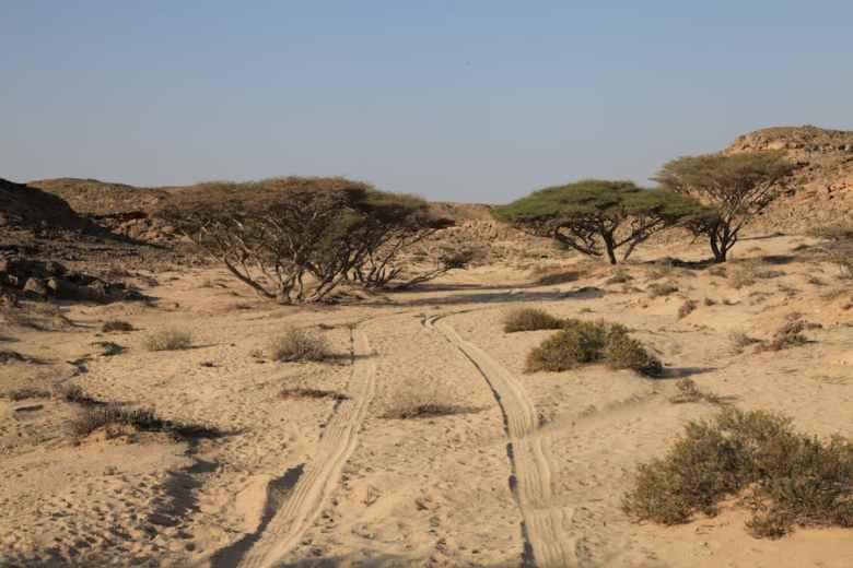 The desert in Oman