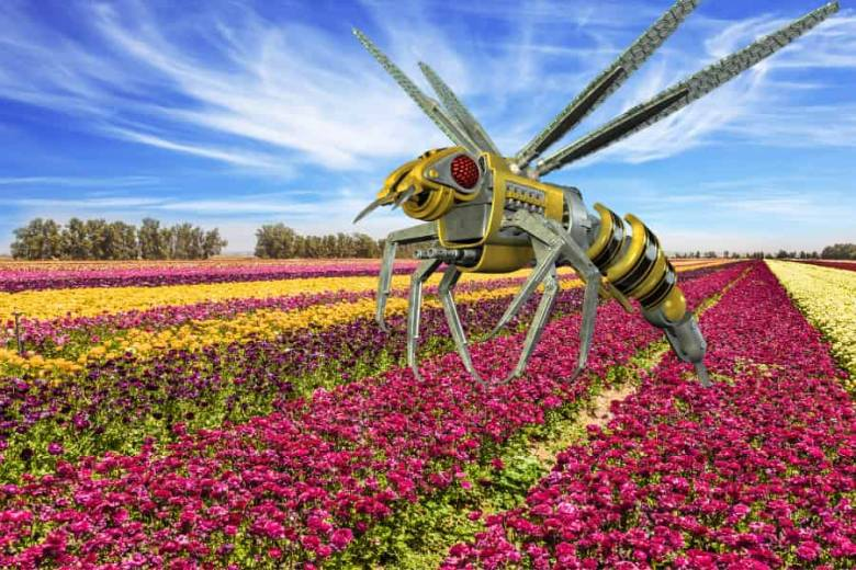 A virtual pollinator above a stripey field of flowers.