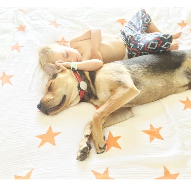 crianca-e-cachorro-dormindo-011