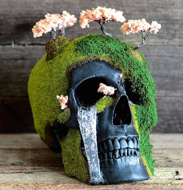 Jack of the Dust - caveira bonsai