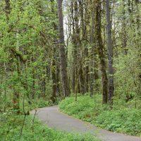 Portland, OR - Tualatin Hills Nature Park