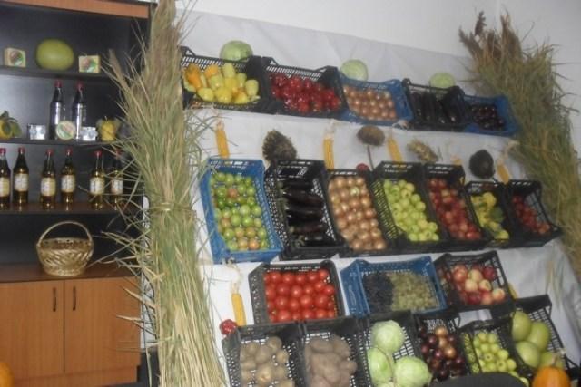 produse agricole Directia Agricola