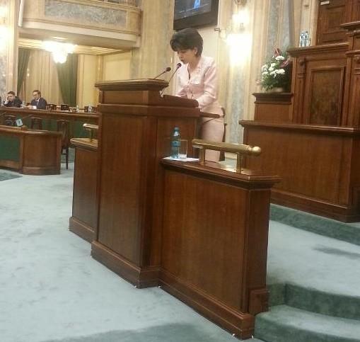 Doina Federovici in Senat