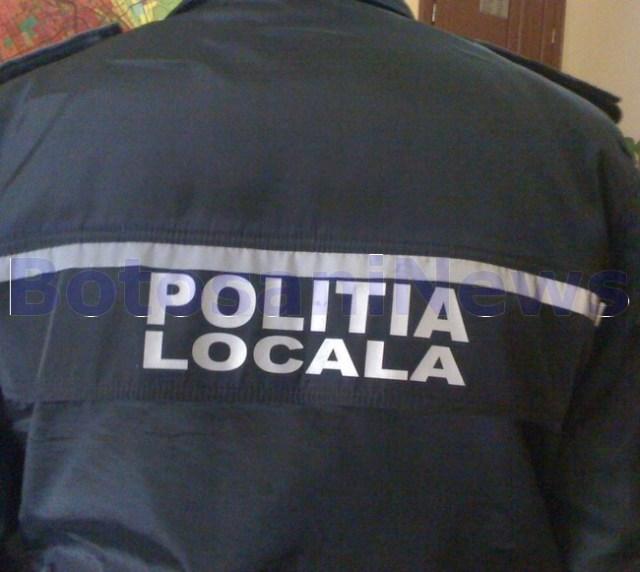 politia locala, stiri, botosani