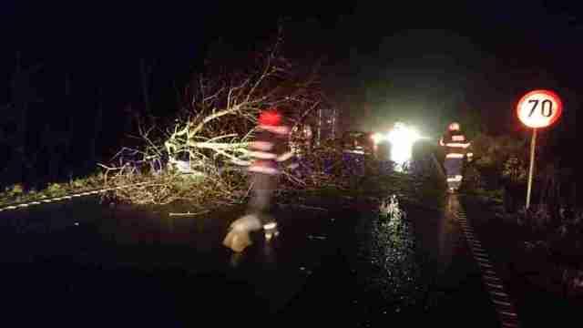 copac-prabusit-masina-distrusa-pe-e-58-la-baisa-botosani