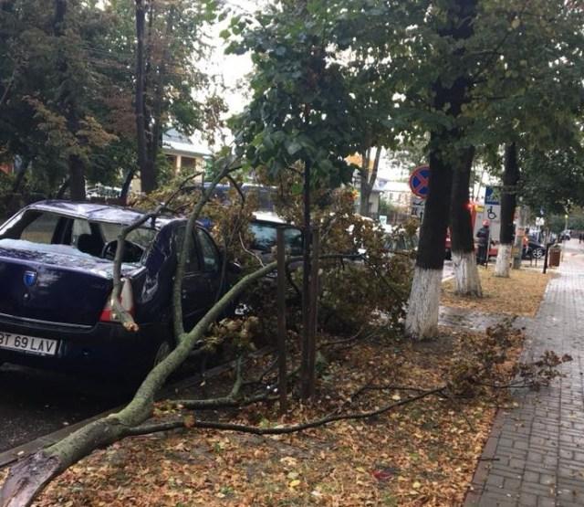 masina distrusa, furtuna, stiri, bulevardul mihai eminescu, botosani
