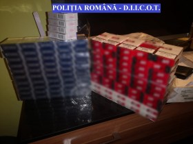 contrabanda, perchezitii, tigari (4)