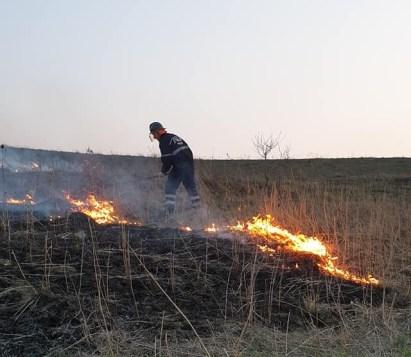 incendiu vegetatie, nicseni, stiri, botosani
