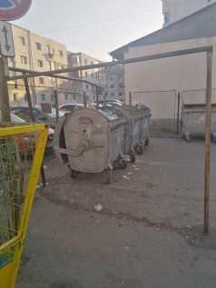 oameni ai strazii, ghena de gunoi, tomberoane (1)