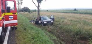 masina in copac, stiri, accident (4)