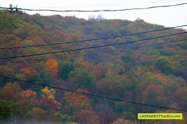 2014-10-18-15.23.00_rt