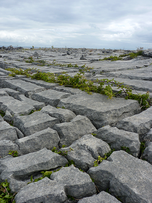 Aran Islands - Inishmore