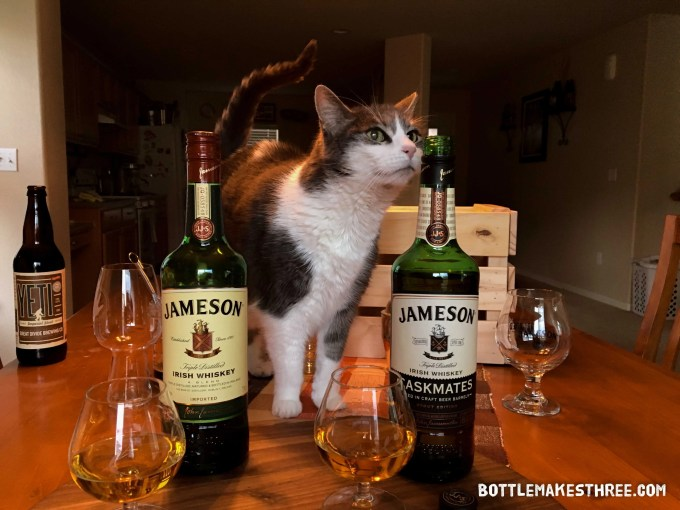 Gracie, our little drinking buddy, enjoying the aroma of Jameson Caskmates | BottleMakesThree.com
