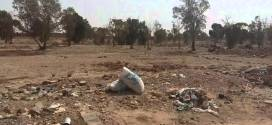 الافارقة في جنان بالقيزاوي ببوسعادة …. قبل حدوث الكارثة