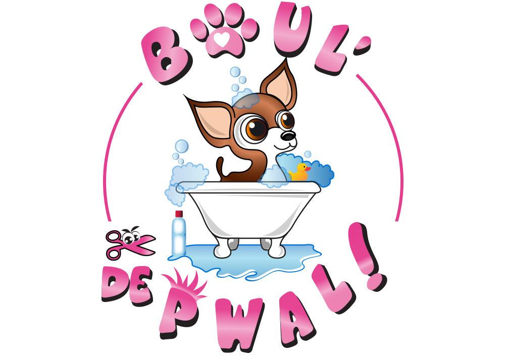 BOUL' DE PWAL