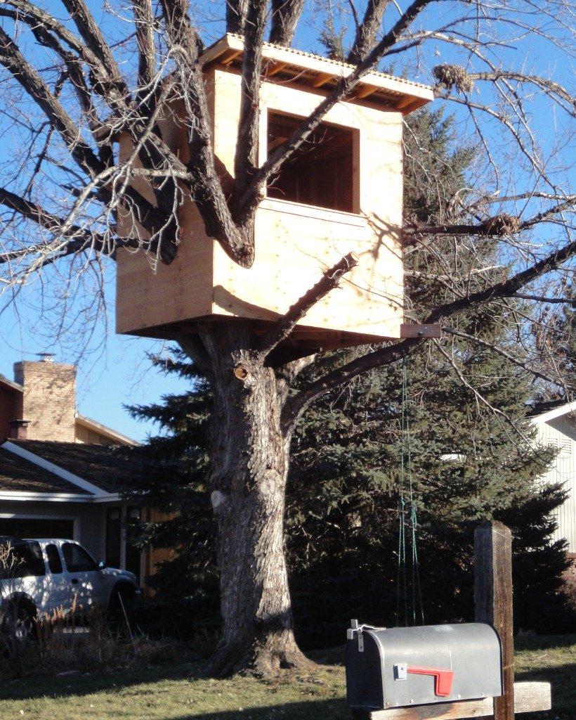 Boulder Tree House  Boulder Real Estate News