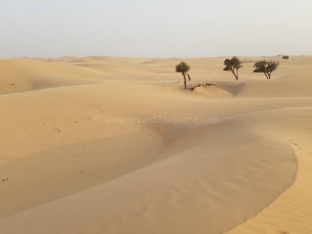 Al khatim desert