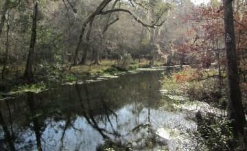 Ichetucknee Springs State Park, Fort White, Florida
