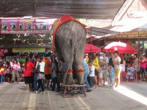 People walking underneath an elephant in Ayuthaya, Thailand