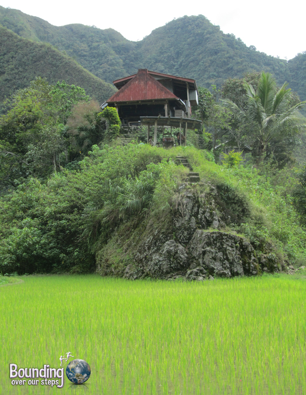 Along the hike to the Tippiya Falls through Batad in the Banaue Rice Terraces