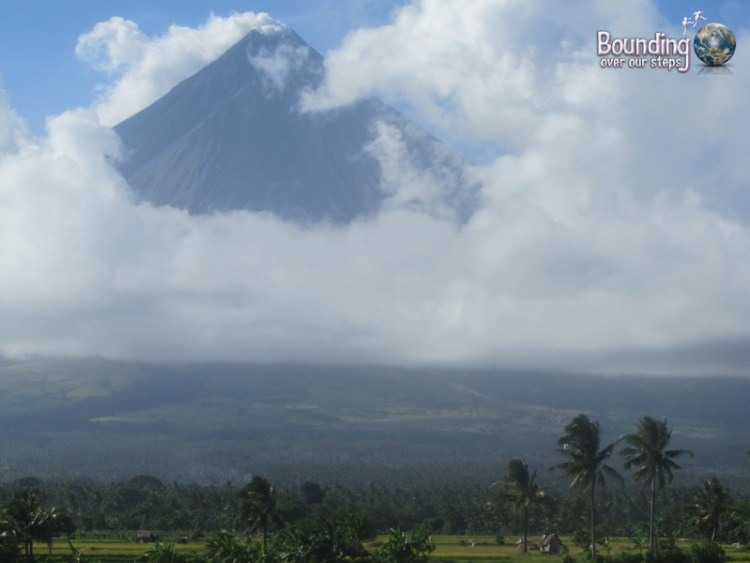 Mt. Mayon in Legazpi behind palm trees