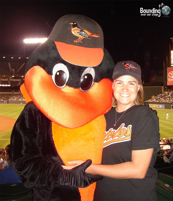 What I Miss About Baltimore - Oriole Bird