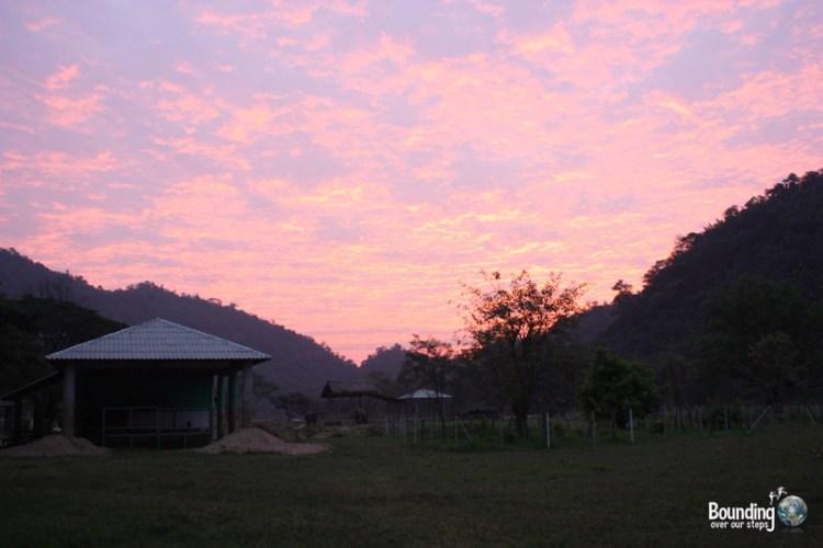 Sunrise at Elephant Nature Park