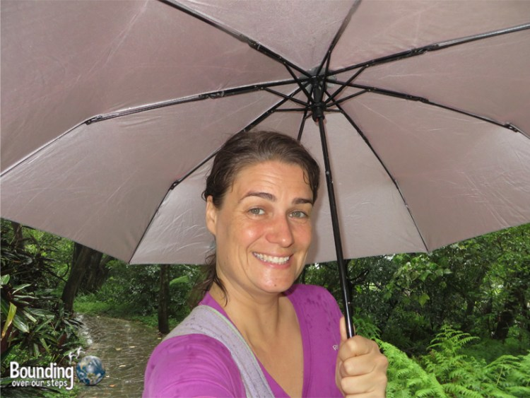 Elephant Mountain - Hiking in Typhoon - Ligeia Under Umbrella