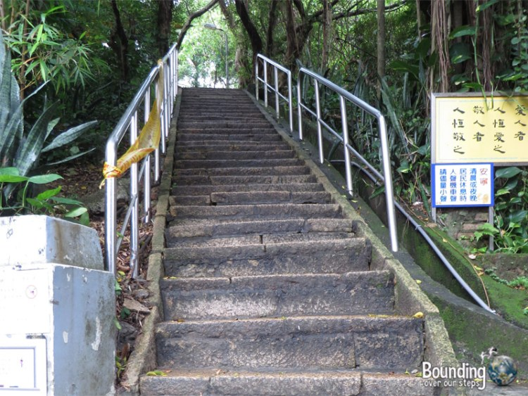 Elephant Mountain - Hiking in Typhoon - Stairs
