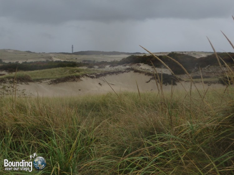 Provincetown Sand Dunes - Rain
