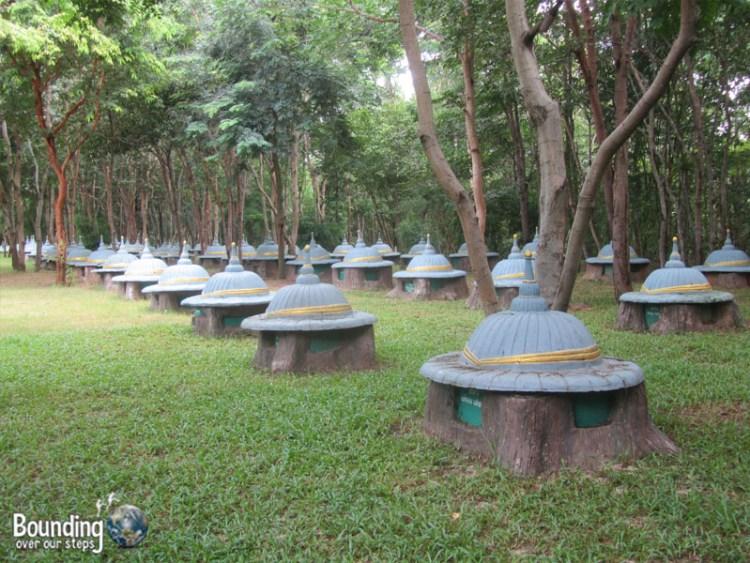 Surin Project - Elephant Graveyard