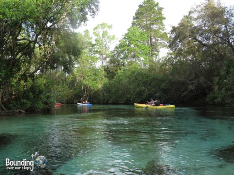 Kayaking Weeki Wachee - Kayaks
