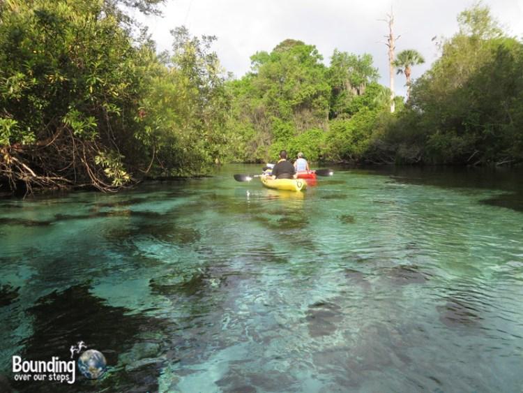Kayaking Weeki Wachee - Sunny
