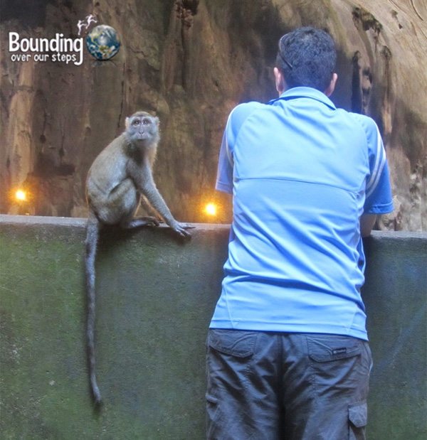 Mindy standing against a wall with a macaque on it