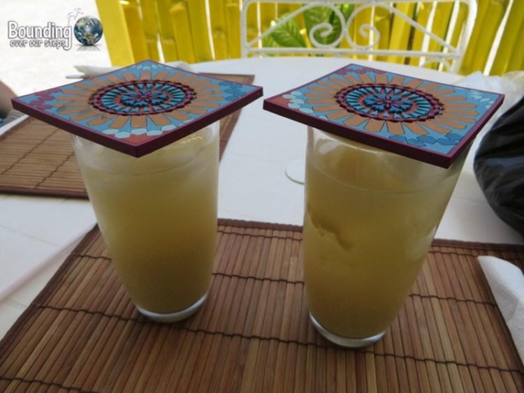 Vegan in Jamaica - June Plum, Guava and Ginger Juice