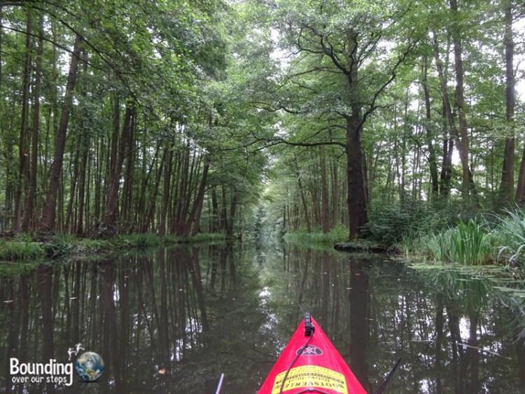 Things to do in Berlin - Spreewald - Kayaking