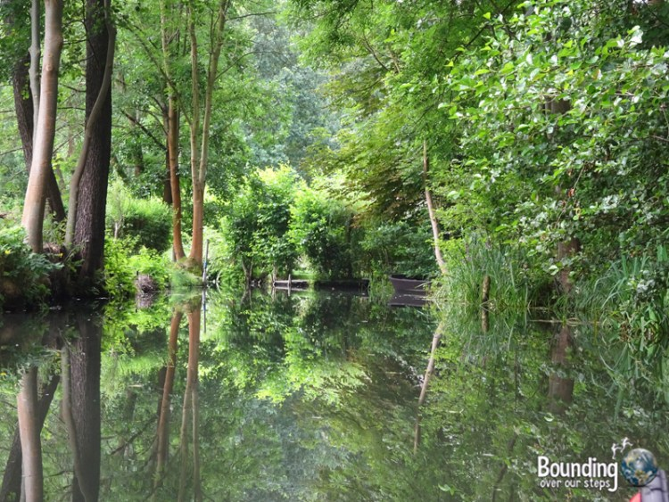 Things to do in Berlin - Spreewald - Reflections