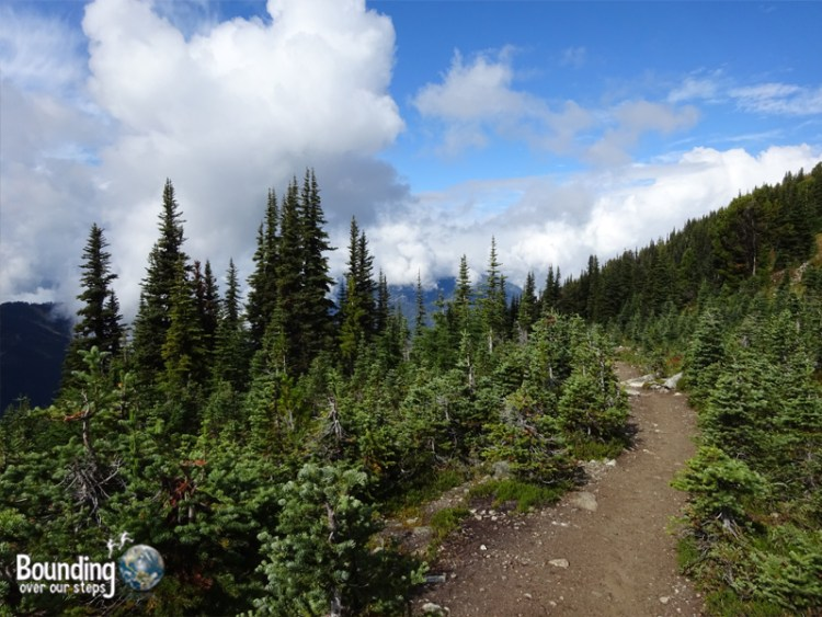 Hiking in Whistler - Blackcomb Mountain Trail