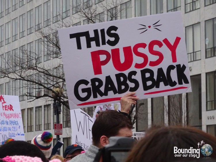 Womens March DC - Pussy Grabs Back Sign