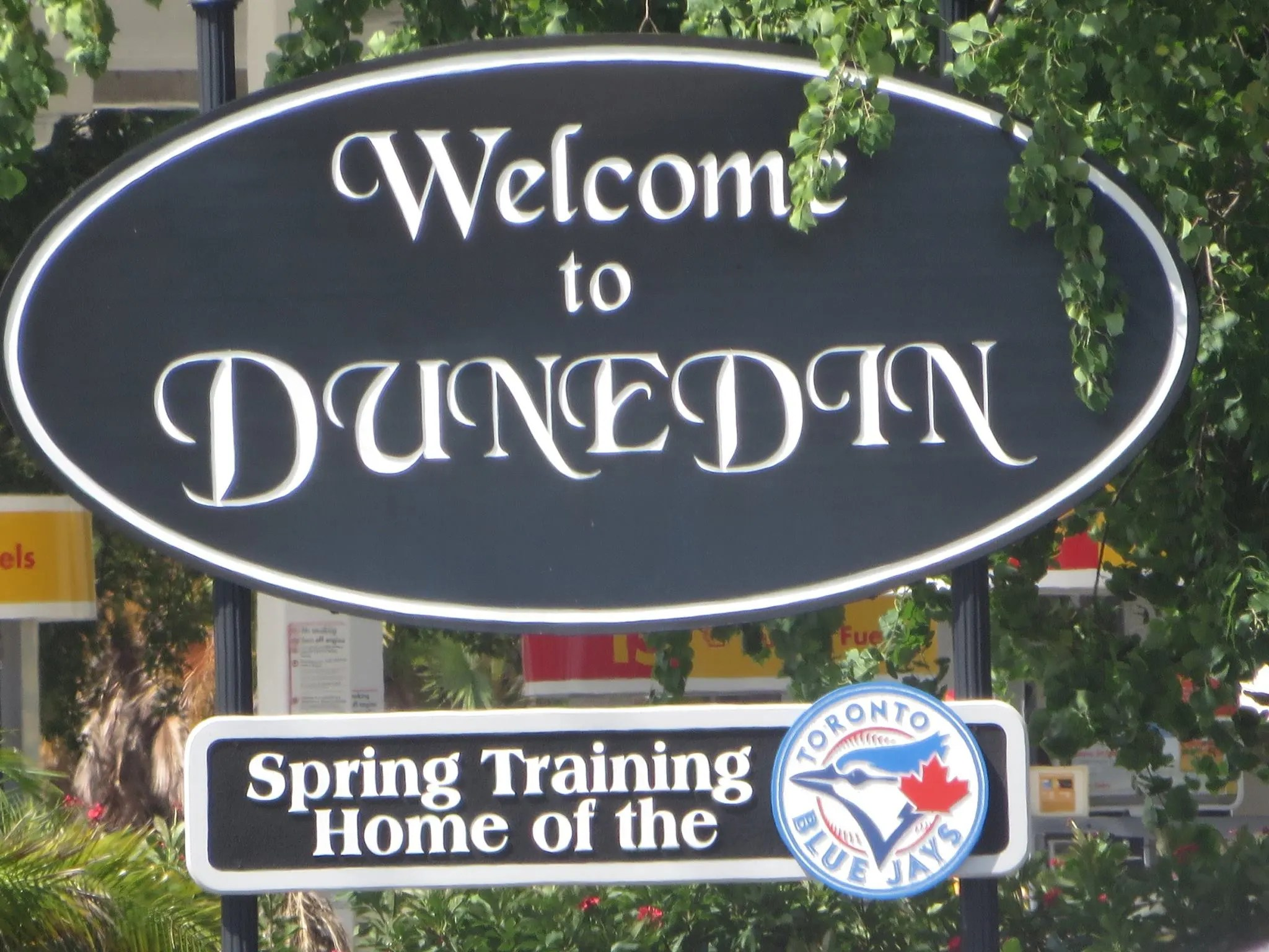 Lesbian Things To Do In Dunedin - featured