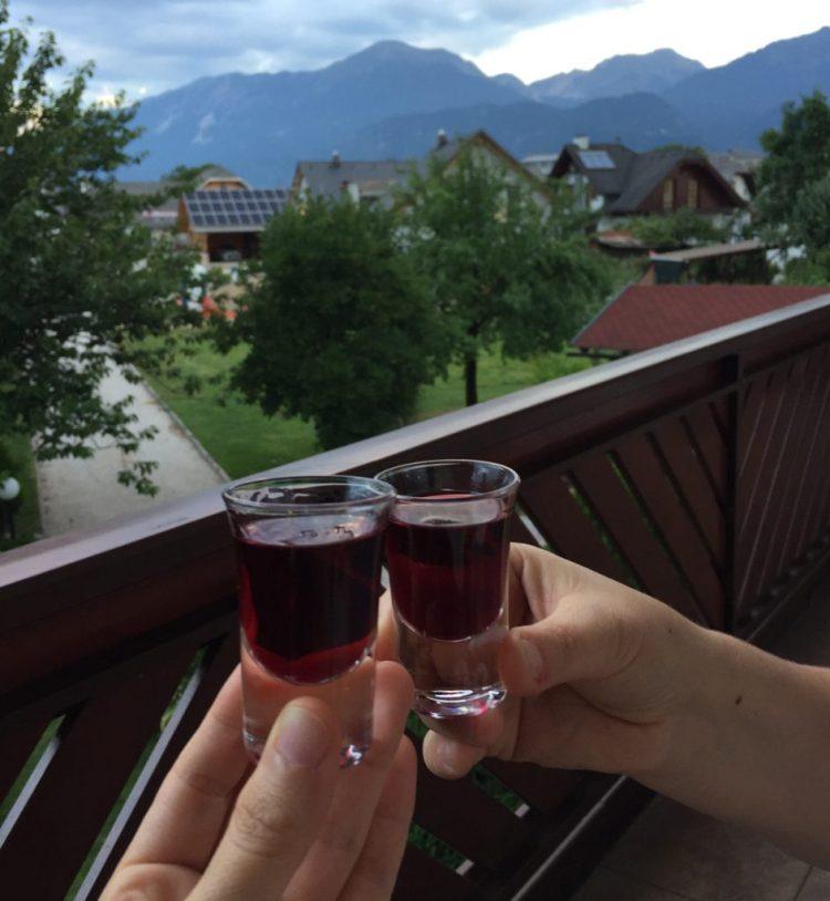 Vegan in Slovenia - Cheers!